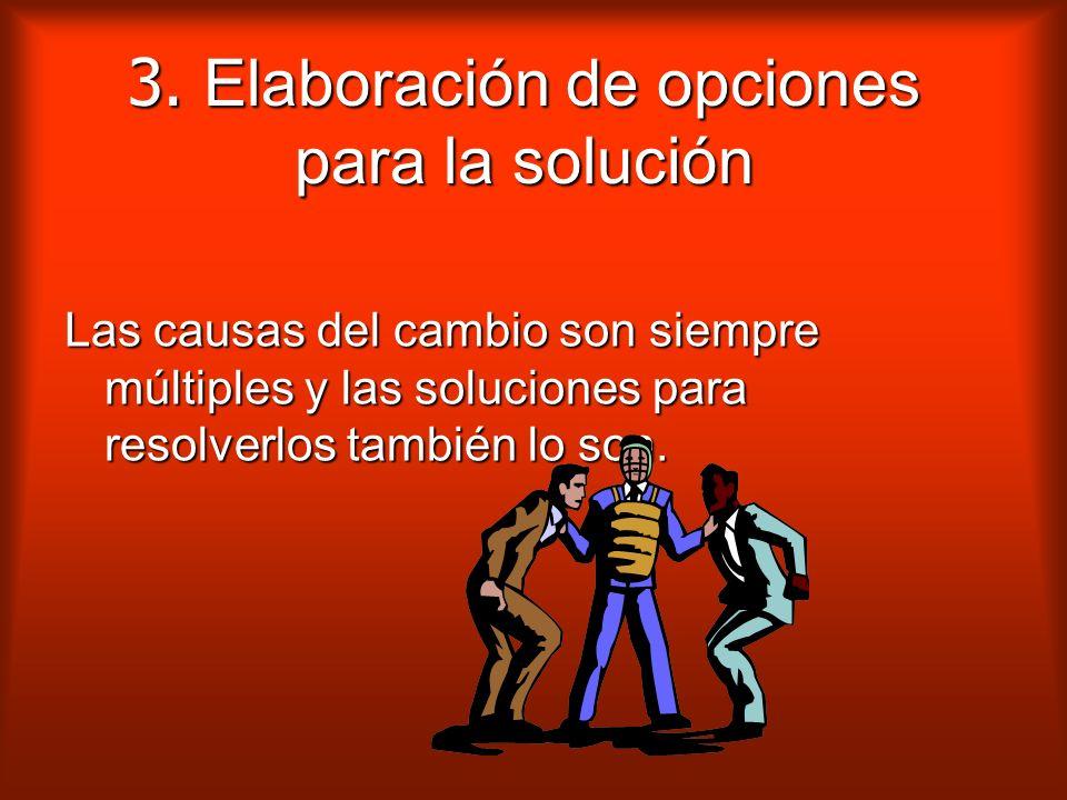 3. Elaboración de opciones para la solución