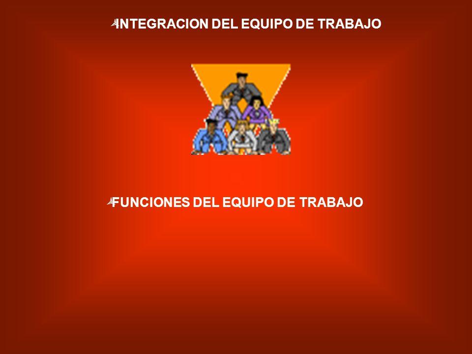 INTEGRACION DEL EQUIPO DE TRABAJO FUNCIONES DEL EQUIPO DE TRABAJO