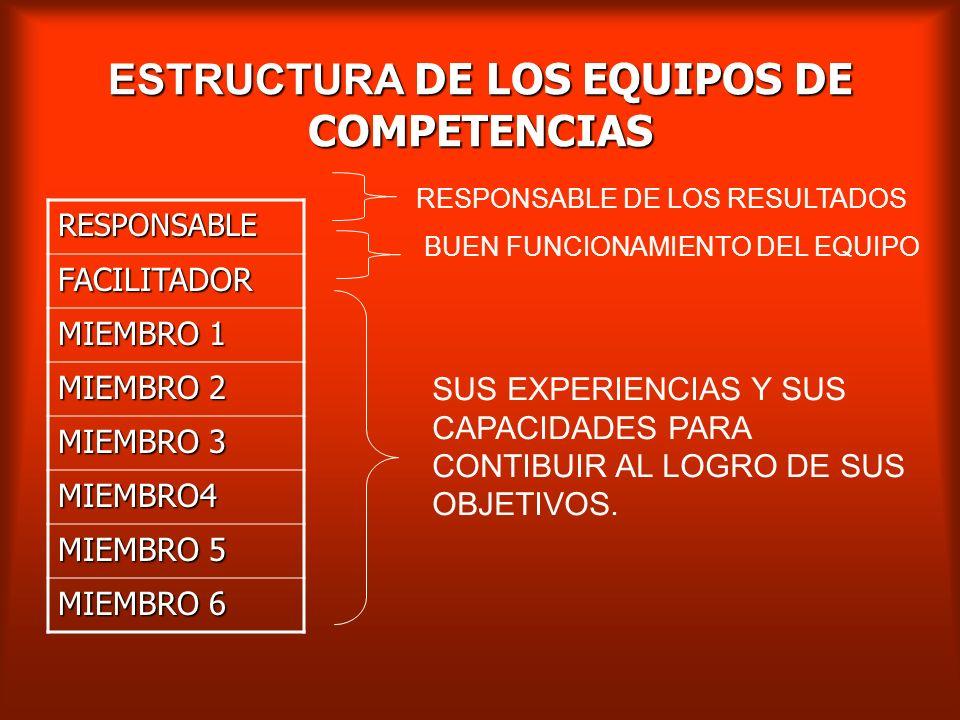 ESTRUCTURA DE LOS EQUIPOS DE COMPETENCIAS