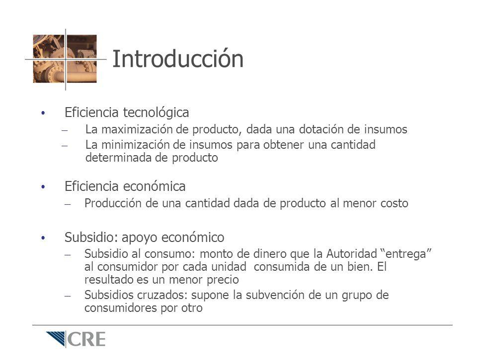 Introducción Eficiencia tecnológica Eficiencia económica