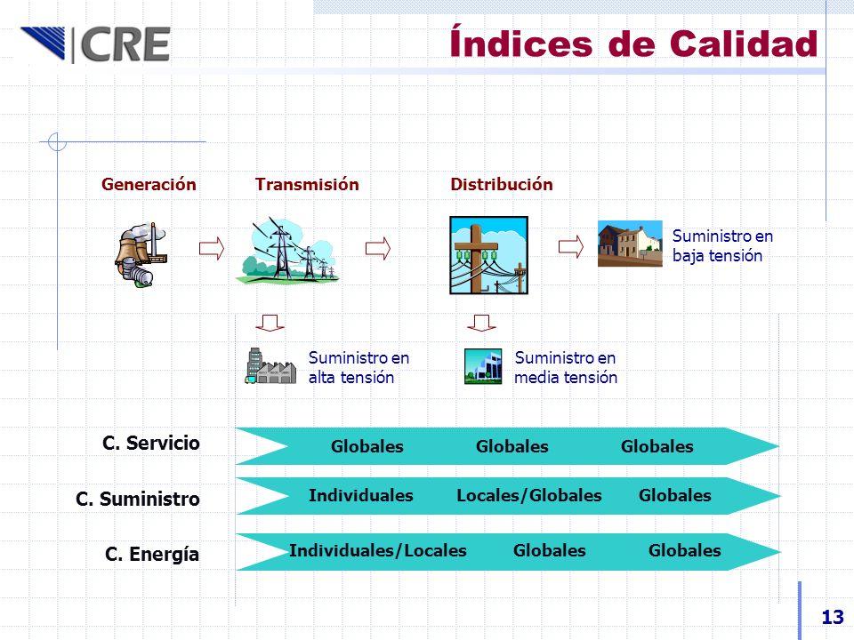 Índices de Calidad C. Servicio C. Suministro C. Energía 13