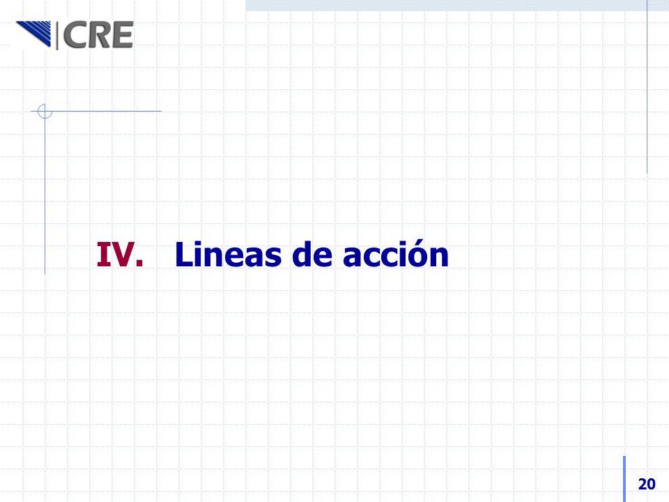 IV. Lineas de acción 20