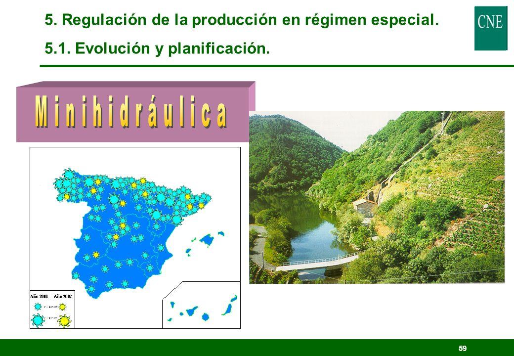 Minihidráulica 5. Regulación de la producción en régimen especial.