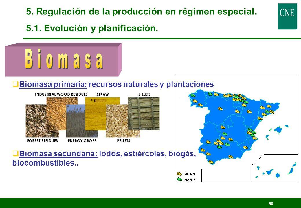 Biomasa 5. Regulación de la producción en régimen especial.
