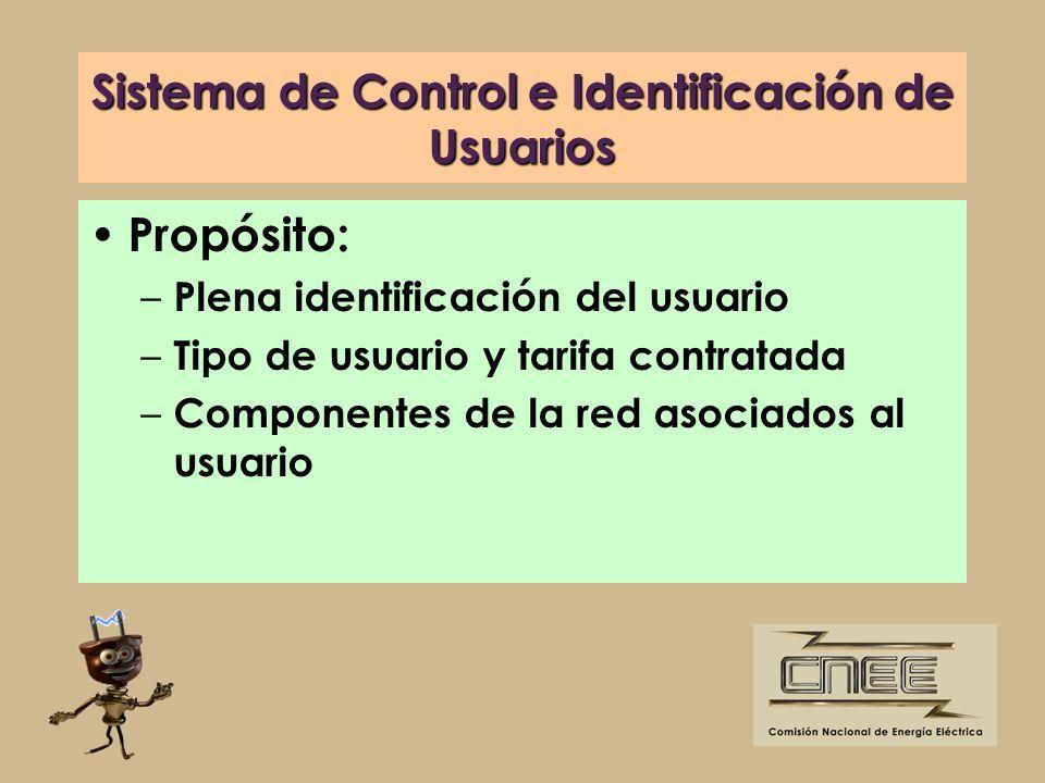 Sistema de Control e Identificación de Usuarios