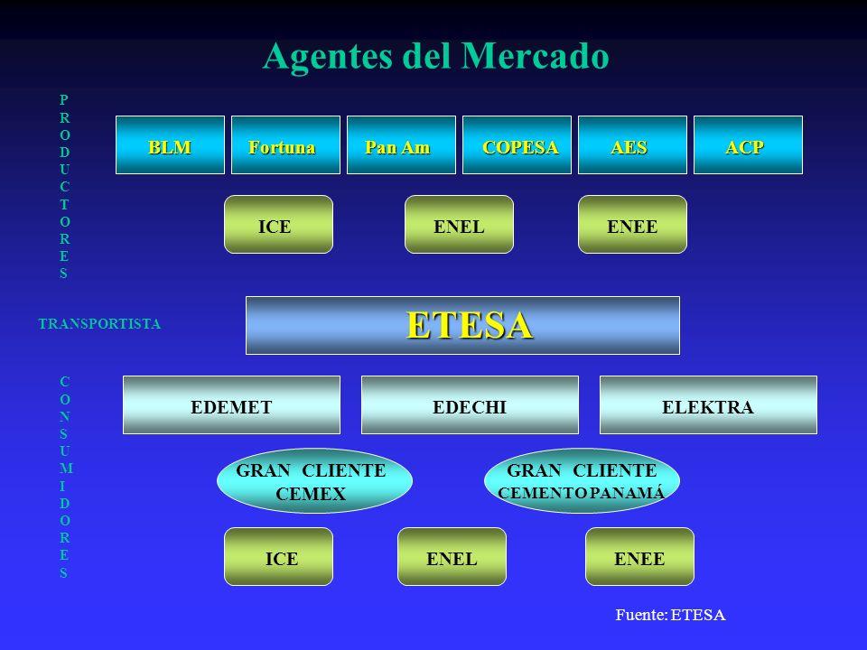 Agentes del Mercado ETESA BLM Fortuna Pan Am COPESA AES ACP ICE ENEL