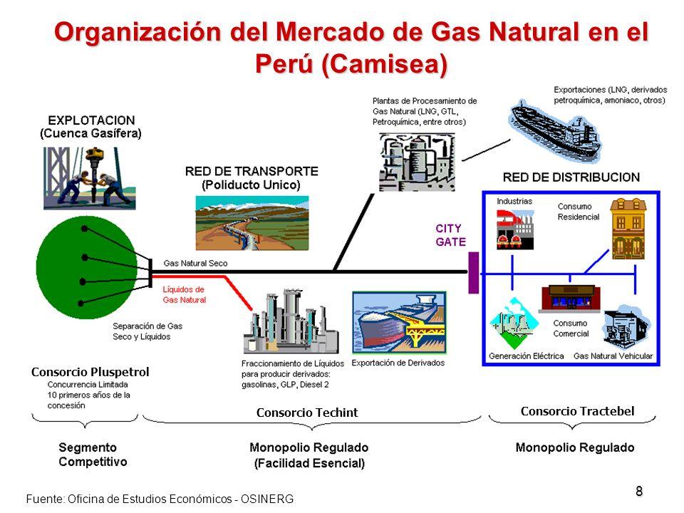 Organización del Mercado de Gas Natural en el Perú (Camisea)