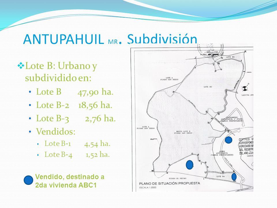 ANTUPAHUIL MR. Subdivisión