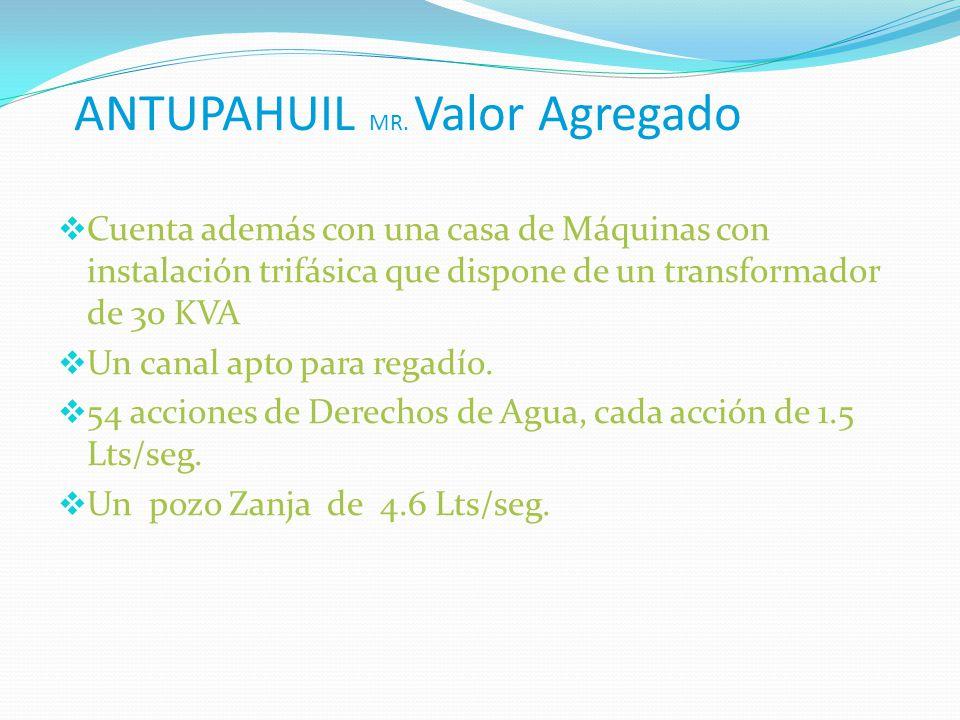 ANTUPAHUIL MR. Valor Agregado