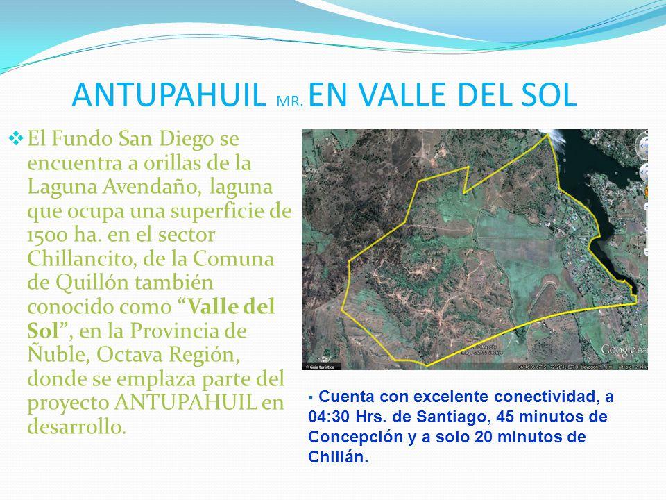 ANTUPAHUIL MR. EN VALLE DEL SOL