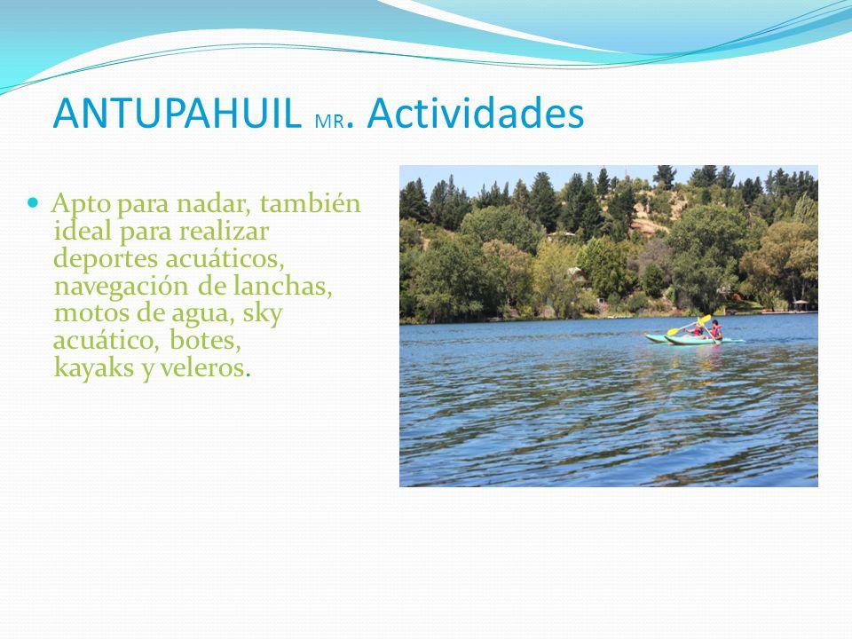 ANTUPAHUIL MR. Actividades