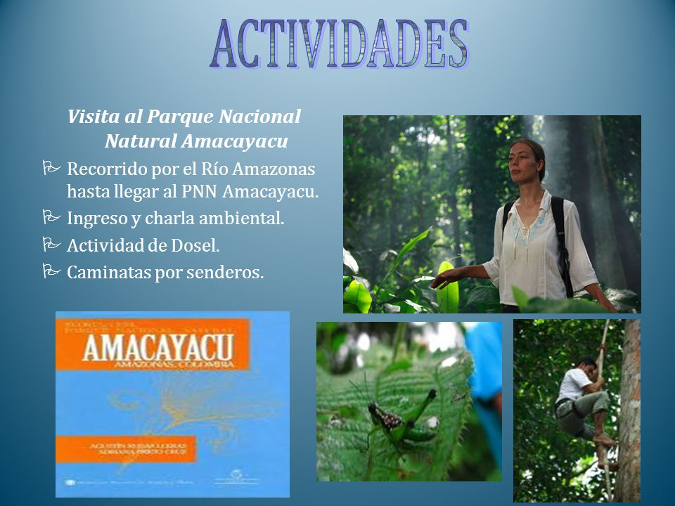 Visita al Parque Nacional Natural Amacayacu