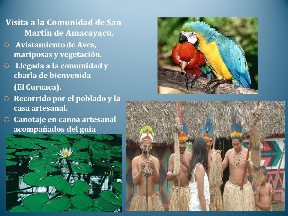 Visita a la Comunidad de San Martín de Amacayacu.