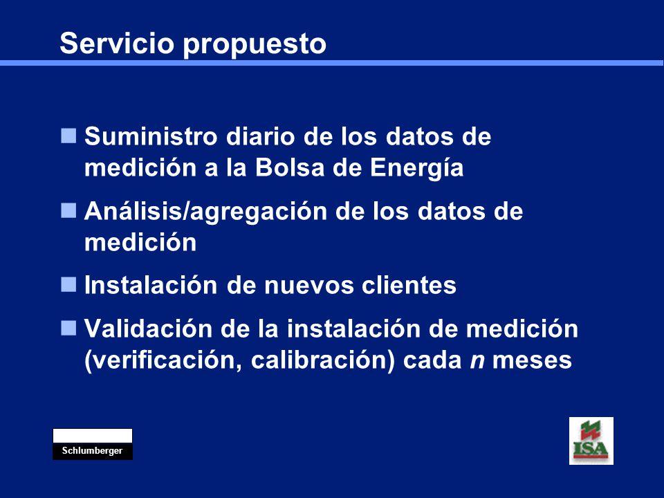 Servicio propuesto Suministro diario de los datos de medición a la Bolsa de Energía. Análisis/agregación de los datos de medición.