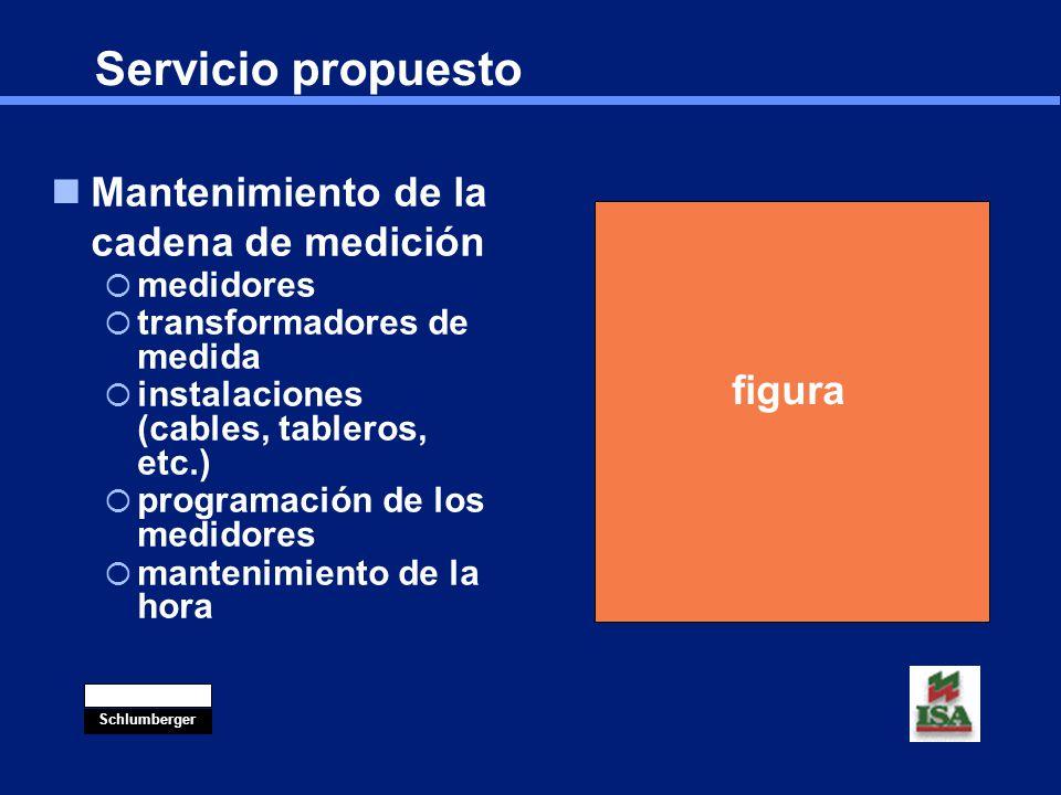 Servicio propuesto Mantenimiento de la cadena de medición figura