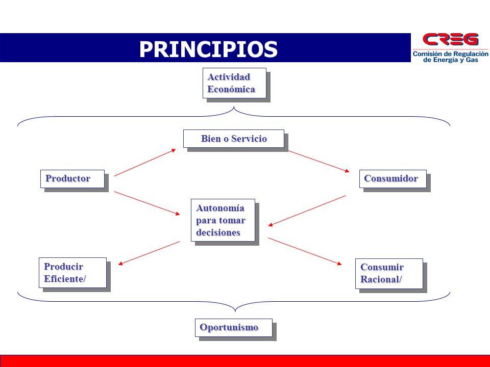 PRINCIPIOS Actividad Económica Bien o Servicio Productor Consumidor