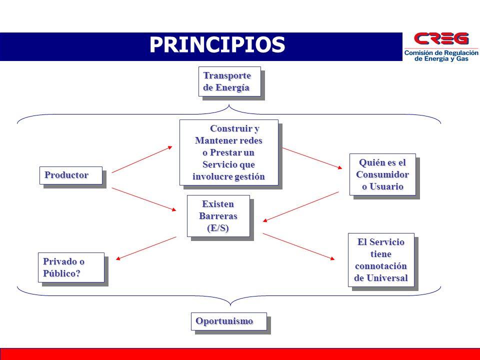 PRINCIPIOS Transporte de Energía Construir y Mantener redes