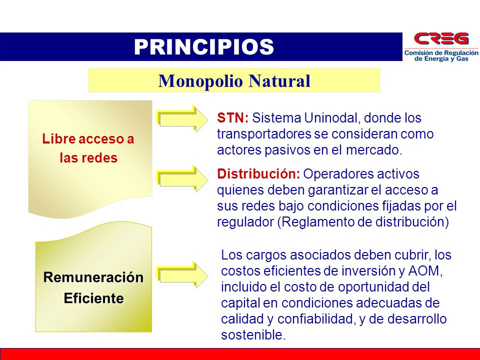 PRINCIPIOS Monopolio Natural Remuneración Eficiente