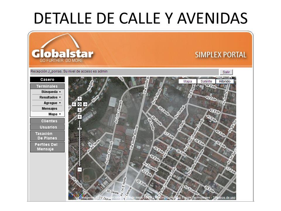DETALLE DE CALLE Y AVENIDAS