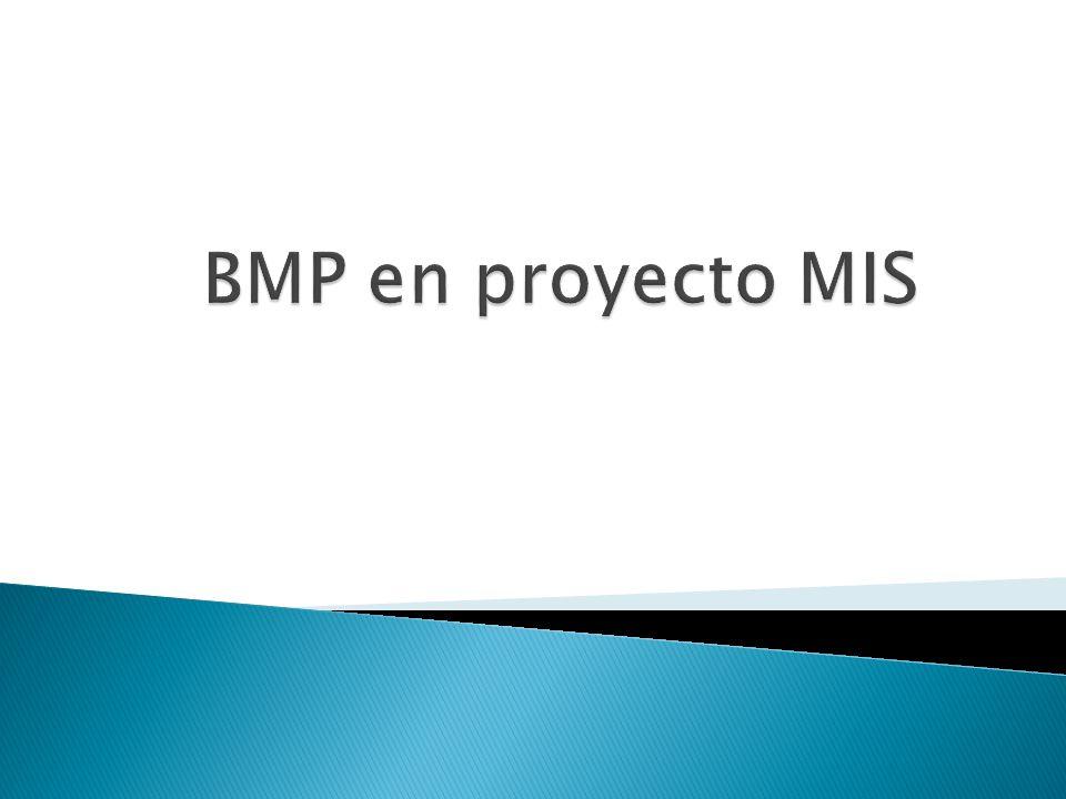 BMP en proyecto MIS