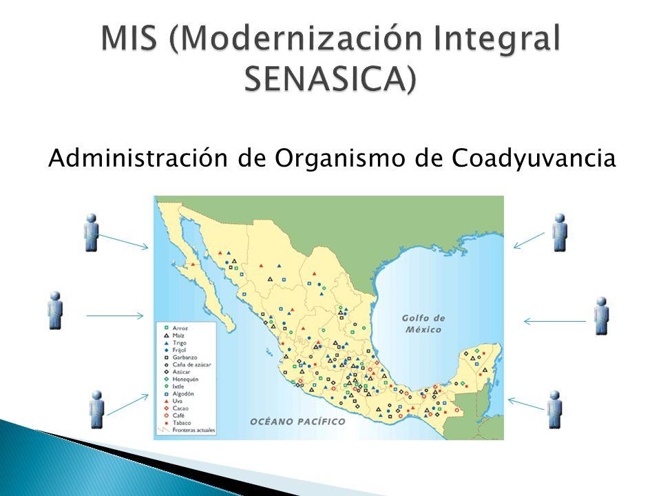 MIS (Modernización Integral SENASICA)