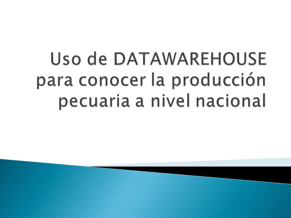 Uso de DATAWAREHOUSE para conocer la producción pecuaria a nivel nacional