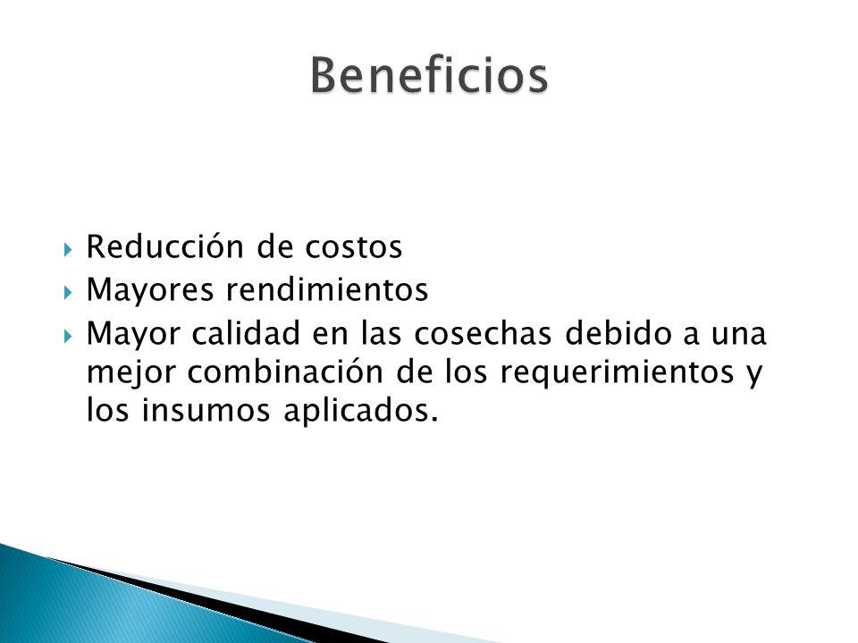 Beneficios Reducción de costos Mayores rendimientos