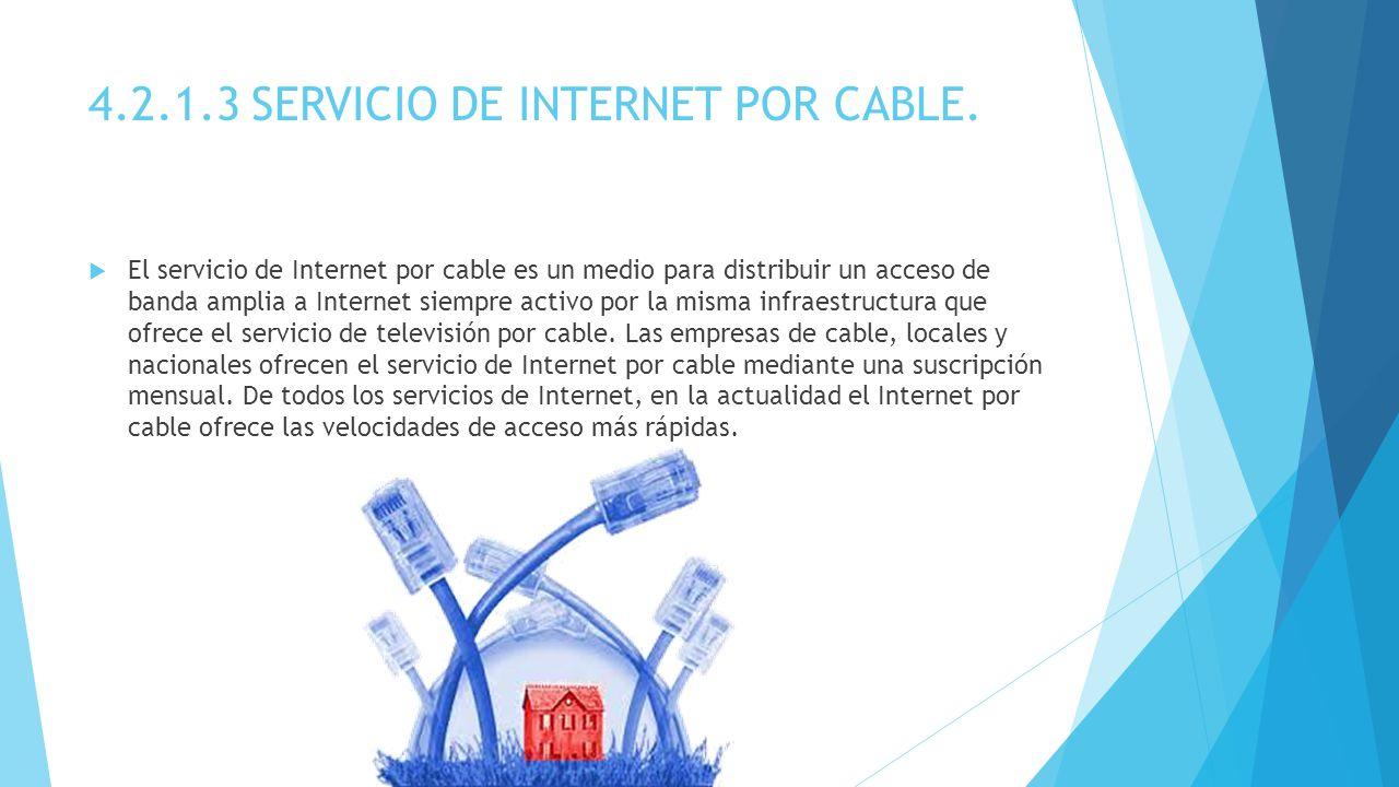 4.2.1.3 SERVICIO DE INTERNET POR CABLE.