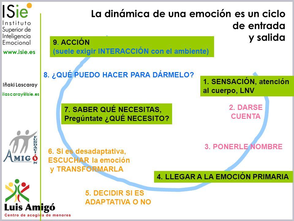 La dinámica de una emoción es un ciclo de entrada y salida