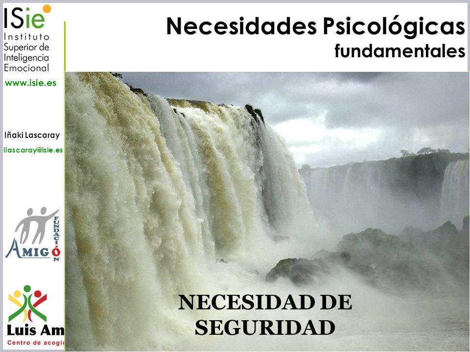 NECESIDAD DE SEGURIDAD