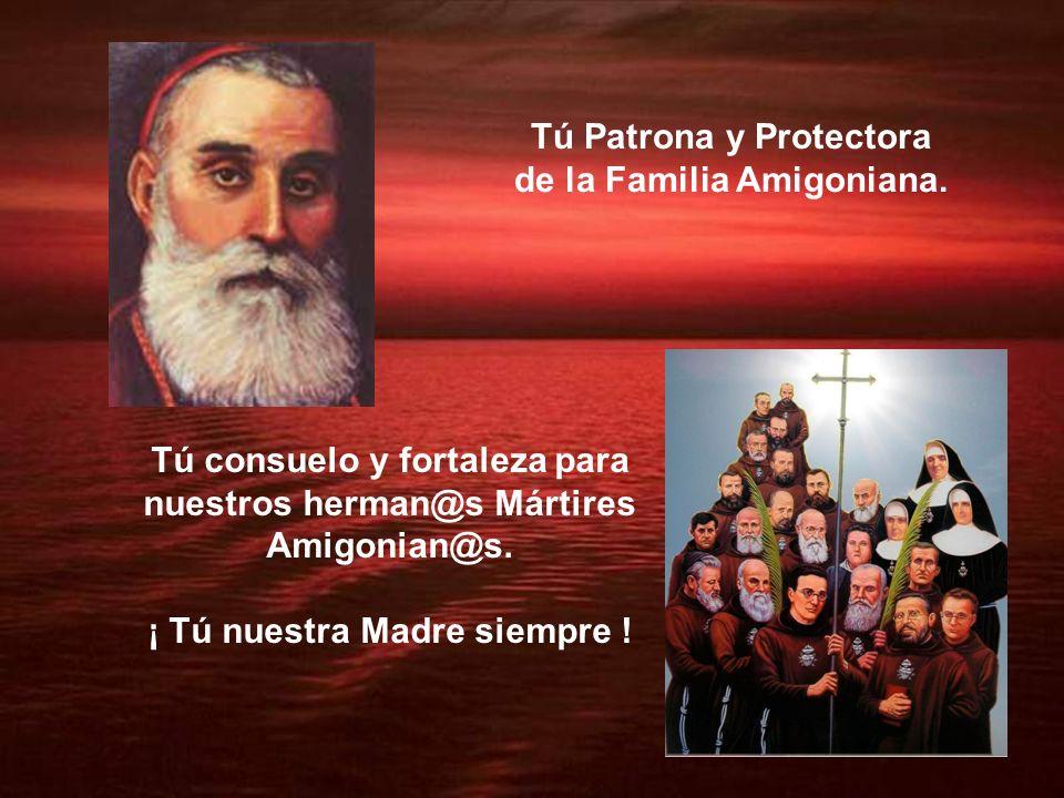 Tú Patrona y Protectora de la Familia Amigoniana.