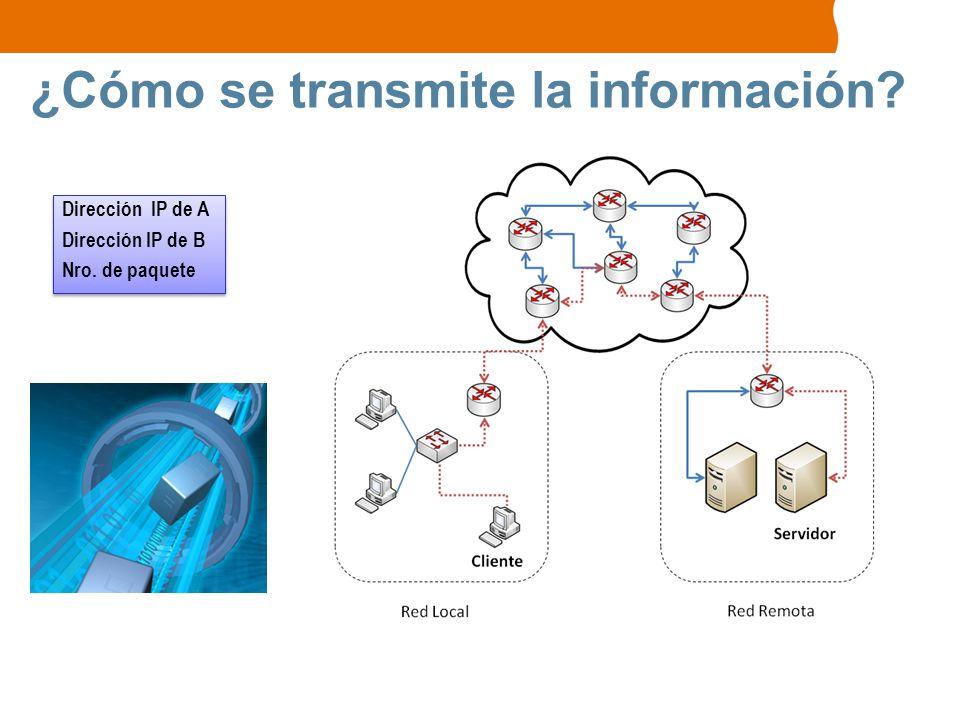 ¿Cómo se transmite la información