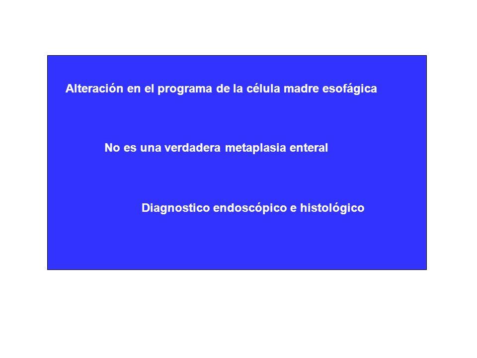 Alteración en el programa de la célula madre esofágica