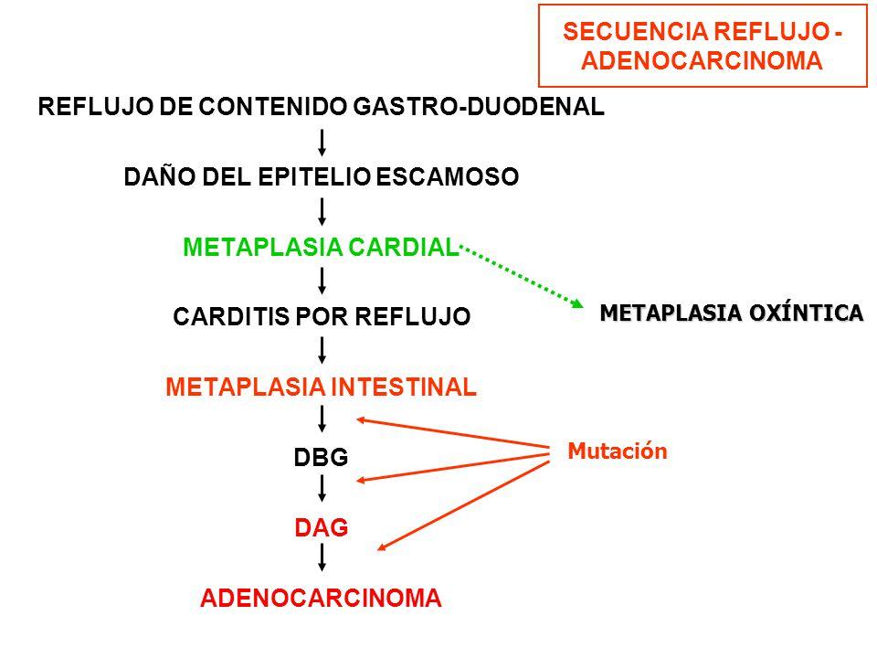 SECUENCIA REFLUJO - ADENOCARCINOMA