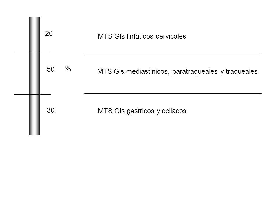 20 MTS Gls linfaticos cervicales. 50. % MTS Gls mediastinicos, paratraqueales y traqueales. 30.