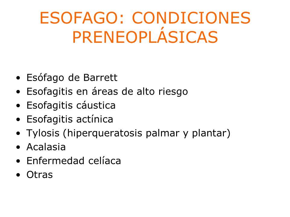 ESOFAGO: CONDICIONES PRENEOPLÁSICAS