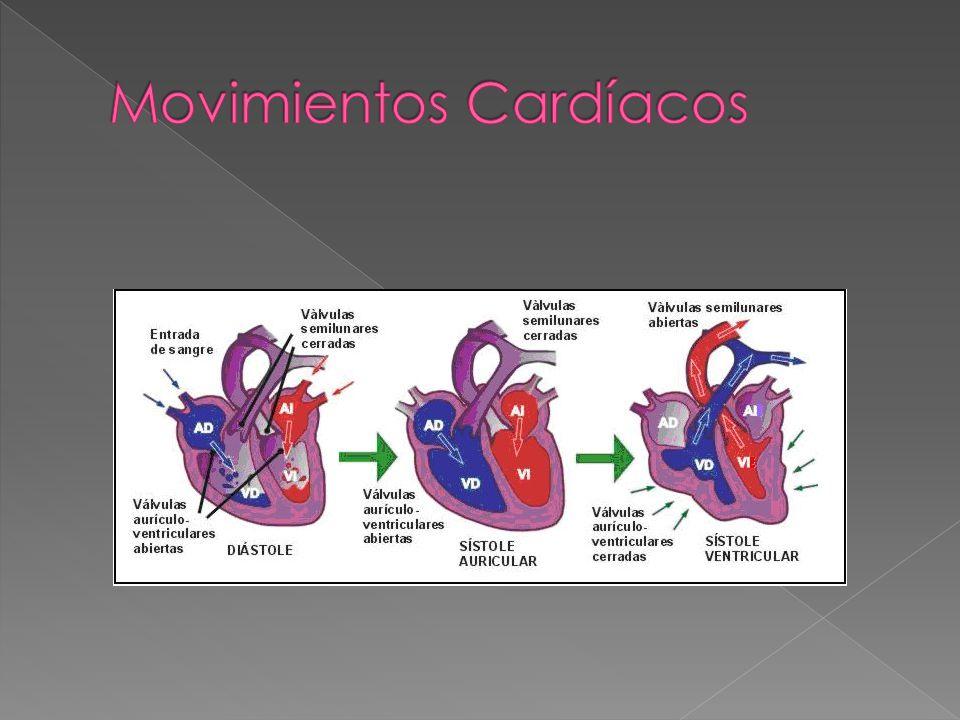 Movimientos Cardíacos