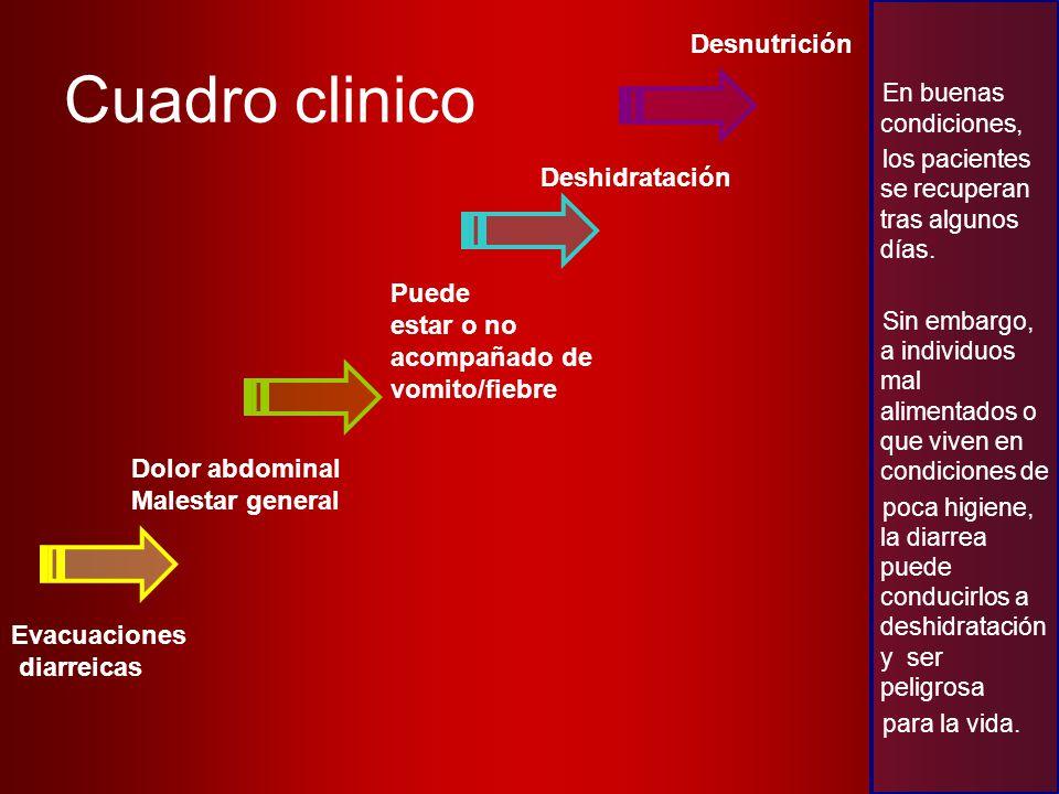Cuadro clinico Desnutrición Deshidratación Puede estar o no