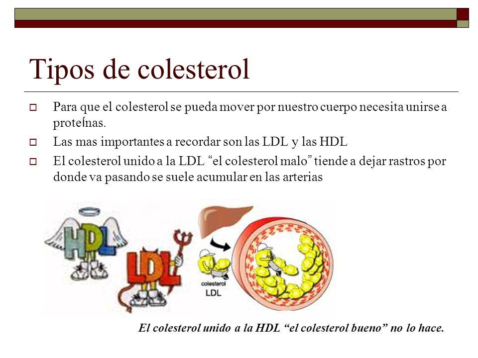 Tipos de colesterol Para que el colesterol se pueda mover por nuestro cuerpo necesita unirse a proteínas.