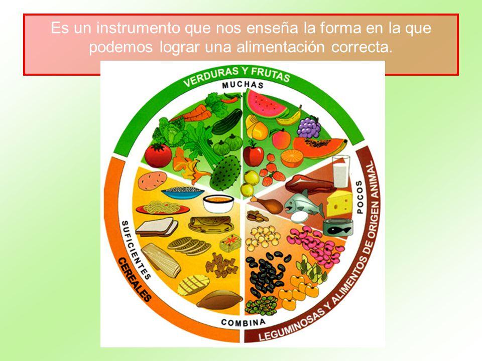 Es un instrumento que nos enseña la forma en la que podemos lograr una alimentación correcta.
