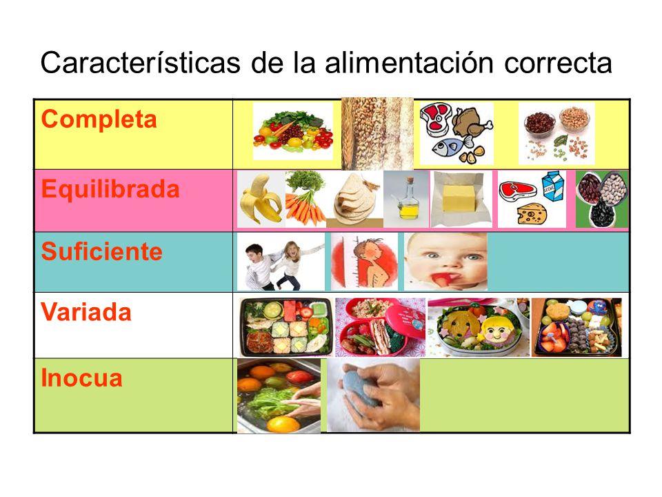 Características de la alimentación correcta