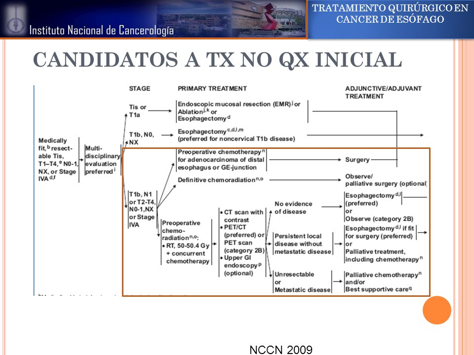 CANDIDATOS A TX NO QX INICIAL