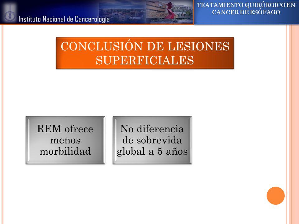 CONCLUSIÓN DE LESIONES SUPERFICIALES