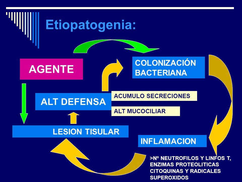 Etiopatogenia: AGENTE ALT DEFENSA COLONIZACIÓN BACTERIANA