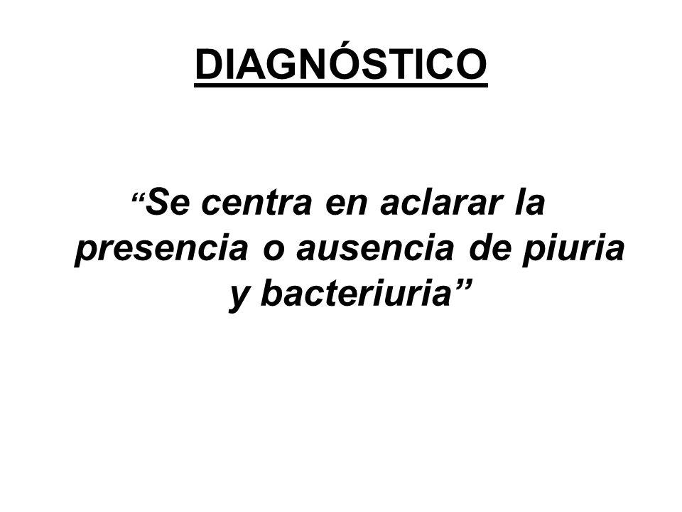 Se centra en aclarar la presencia o ausencia de piuria y bacteriuria