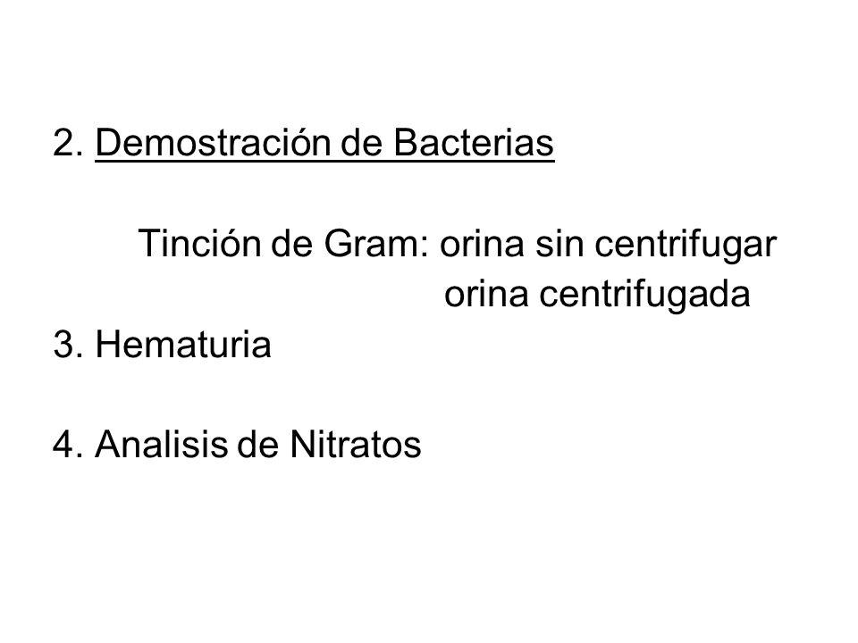 2. Demostración de Bacterias
