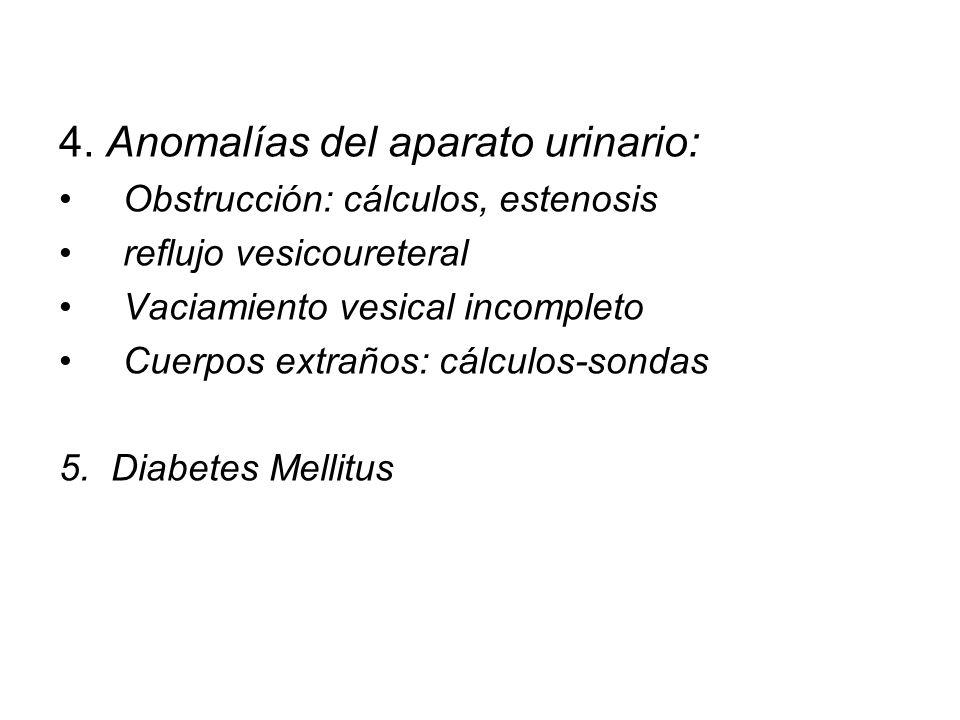 4. Anomalías del aparato urinario: