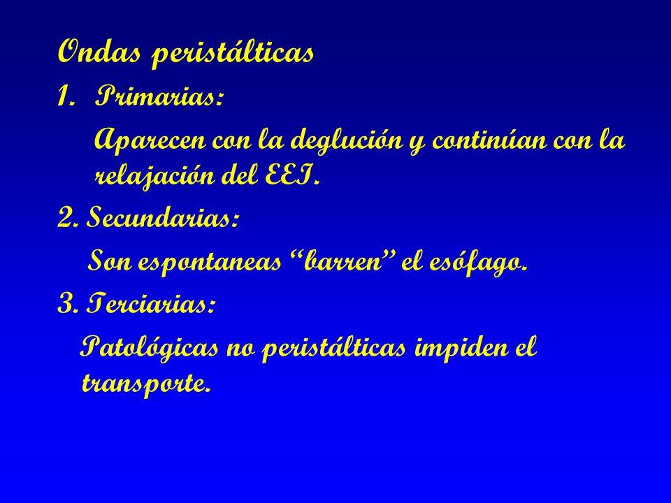 Ondas peristálticas Primarias: