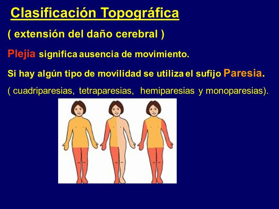Clasificación Topográfica ( extensión del daño cerebral )