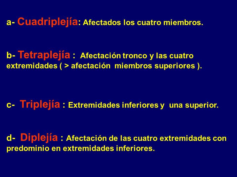 a- Cuadriplejía: Afectados los cuatro miembros.